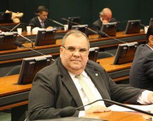 Deputado federal, Rômulo Gouveia