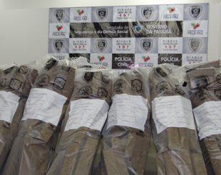Mais de 970 kg de drogas e 2.454 armas foram apreendidas na PB
