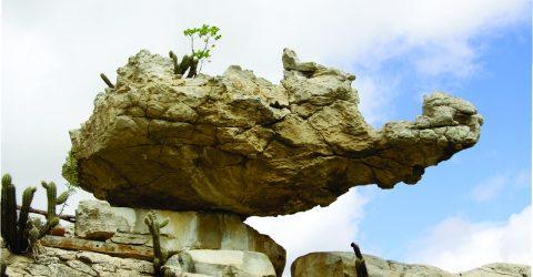 Pedra da Tartaruga, em Gurjão