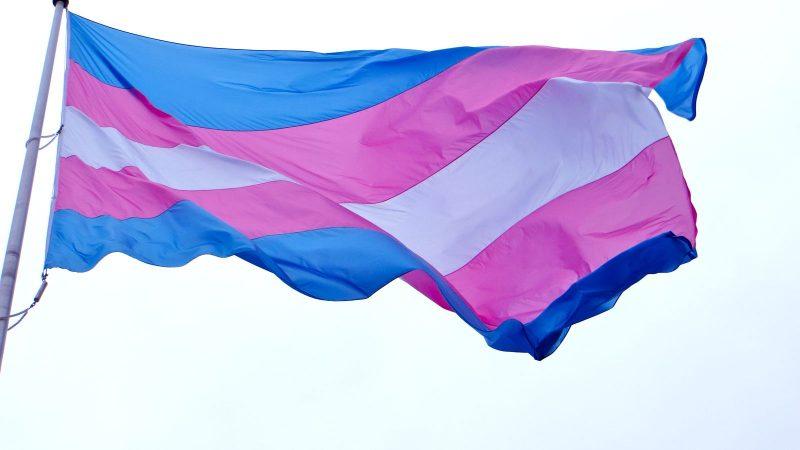 Indulto do Dia das Mães inclui grávidas, mulheres transexuais e indígenas
