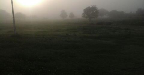 Neblina ao amanhecer em Mogeiro, PB